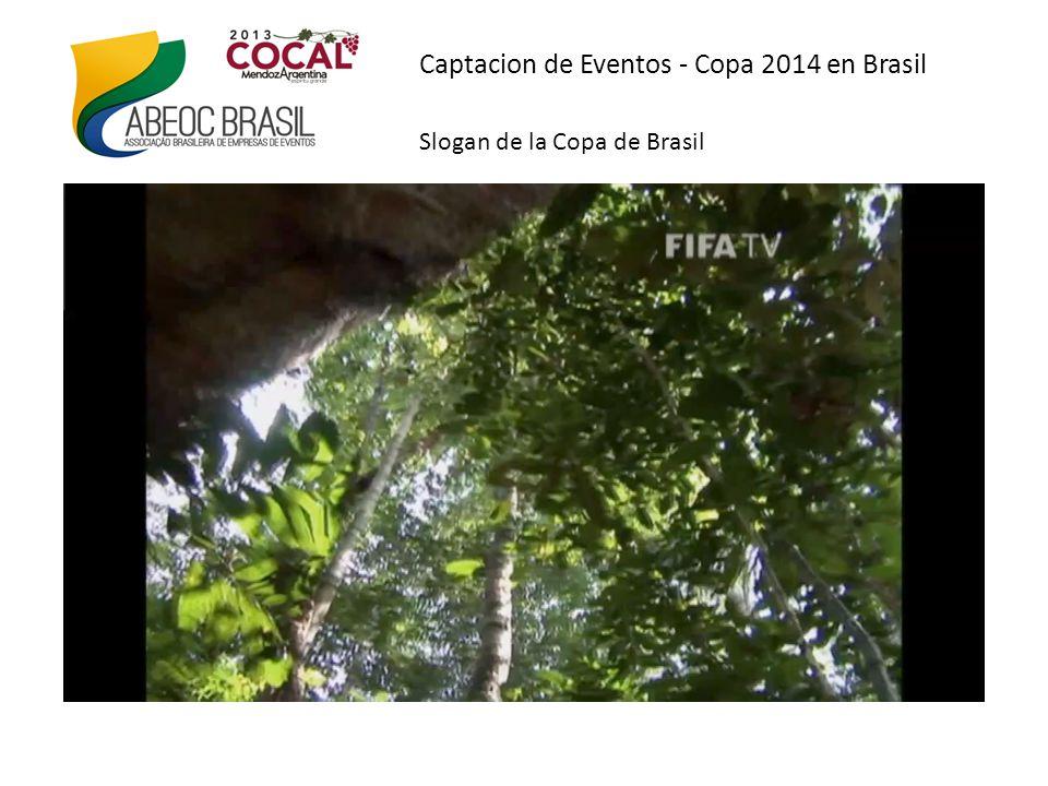 Captacion de Eventos - Copa 2014 no Brasil La mascota Fuleco