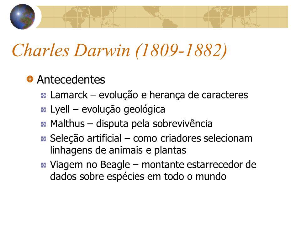 Charles Darwin (1809-1882) Antecedentes Lamarck – evolução e herança de caracteres Lyell – evolução geológica Malthus – disputa pela sobrevivência Sel