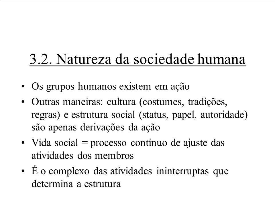 3.2. Natureza da sociedade humana Os grupos humanos existem em ação Outras maneiras: cultura (costumes, tradições, regras) e estrutura social (status,