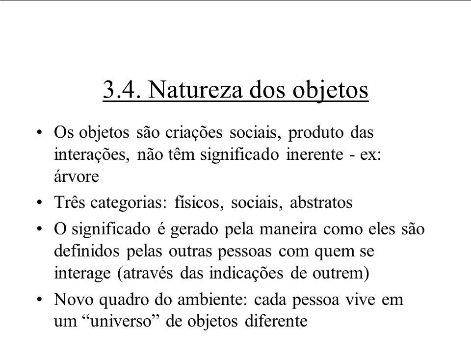 3.4. Natureza dos objetos Os objetos são criações sociais, produto das interações, não têm significado inerente - ex: árvore Três categorias: físicos,