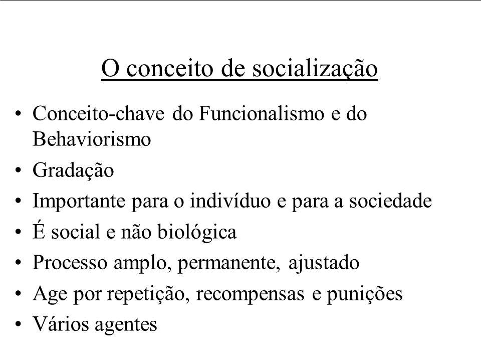 Usos e usuários da informação O conceito de socialização Conceito-chave do Funcionalismo e do Behaviorismo Gradação Importante para o indivíduo e para