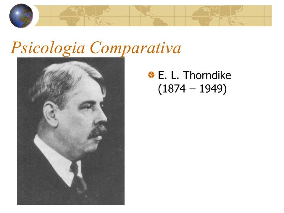 Psicologia Comparativa E. L. Thorndike (1874 – 1949)