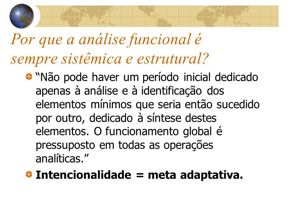 Por que a análise funcional é sempre sistêmica e estrutural.