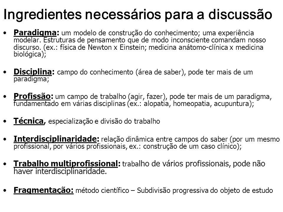Ingredientes necessários para a discussão Paradigma: um modelo de construção do conhecimento; uma experiência modelar.