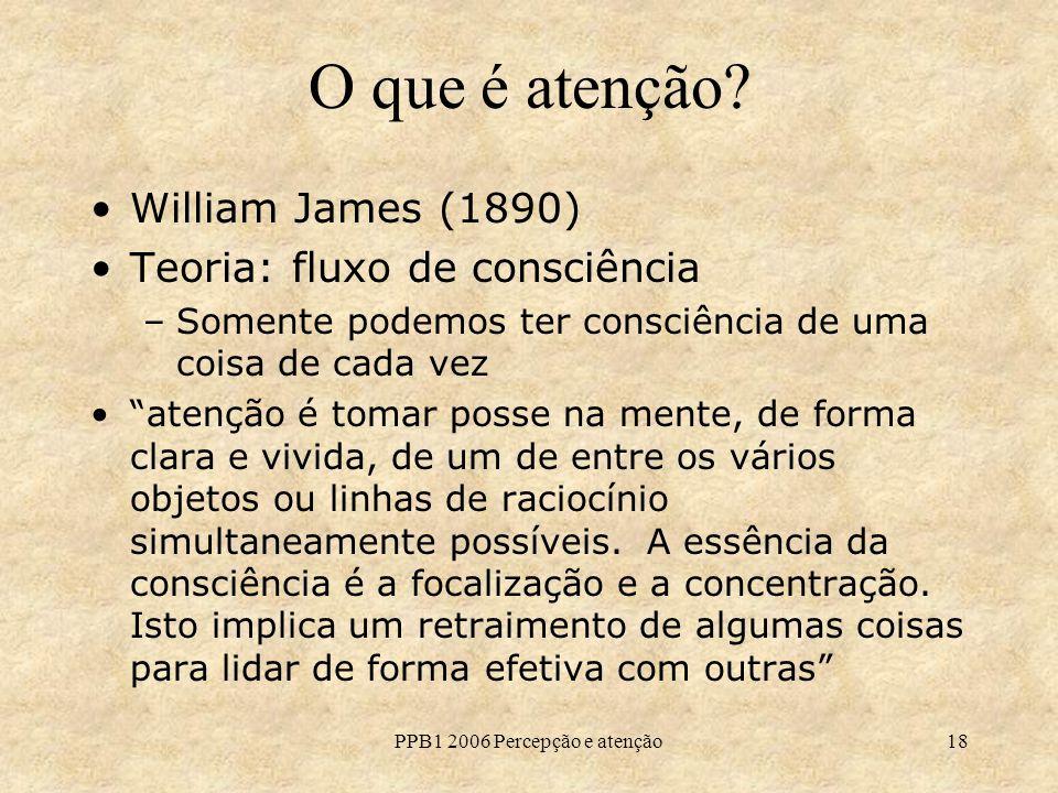 PPB1 2006 Percepção e atenção18 O que é atenção? William James (1890) Teoria: fluxo de consciência –Somente podemos ter consciência de uma coisa de ca