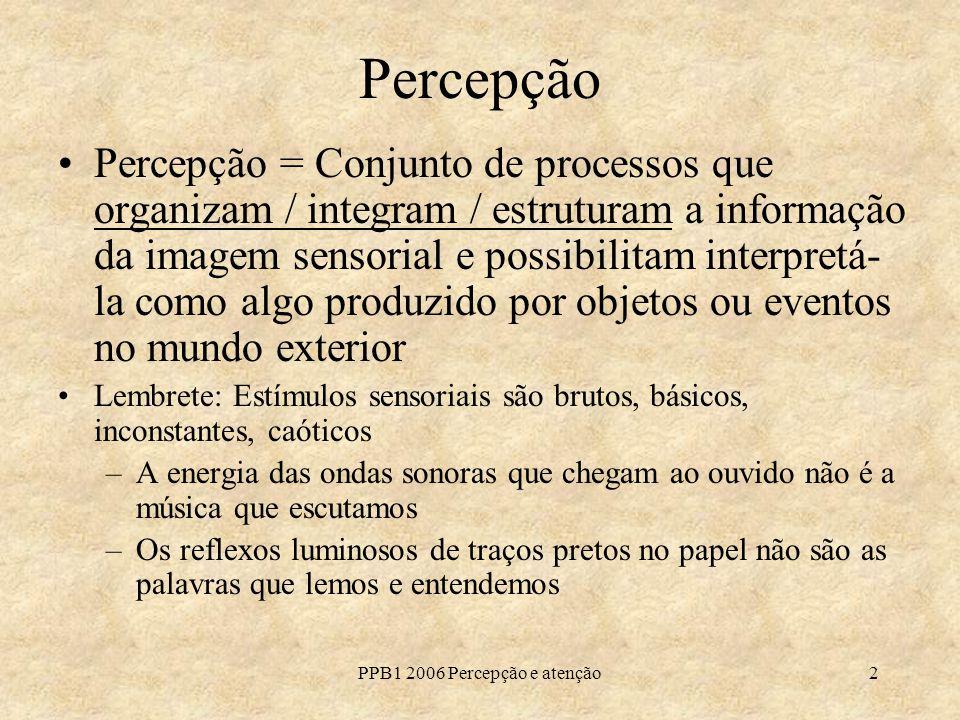 PPB1 2006 Percepção e atenção2 Percepção Percepção = Conjunto de processos que organizam / integram / estruturam a informação da imagem sensorial e po