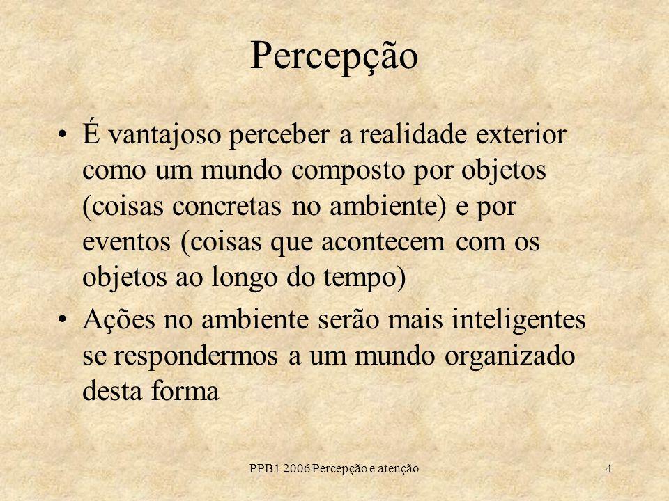 PPB1 2006 Percepção e atenção4 Percepção É vantajoso perceber a realidade exterior como um mundo composto por objetos (coisas concretas no ambiente) e