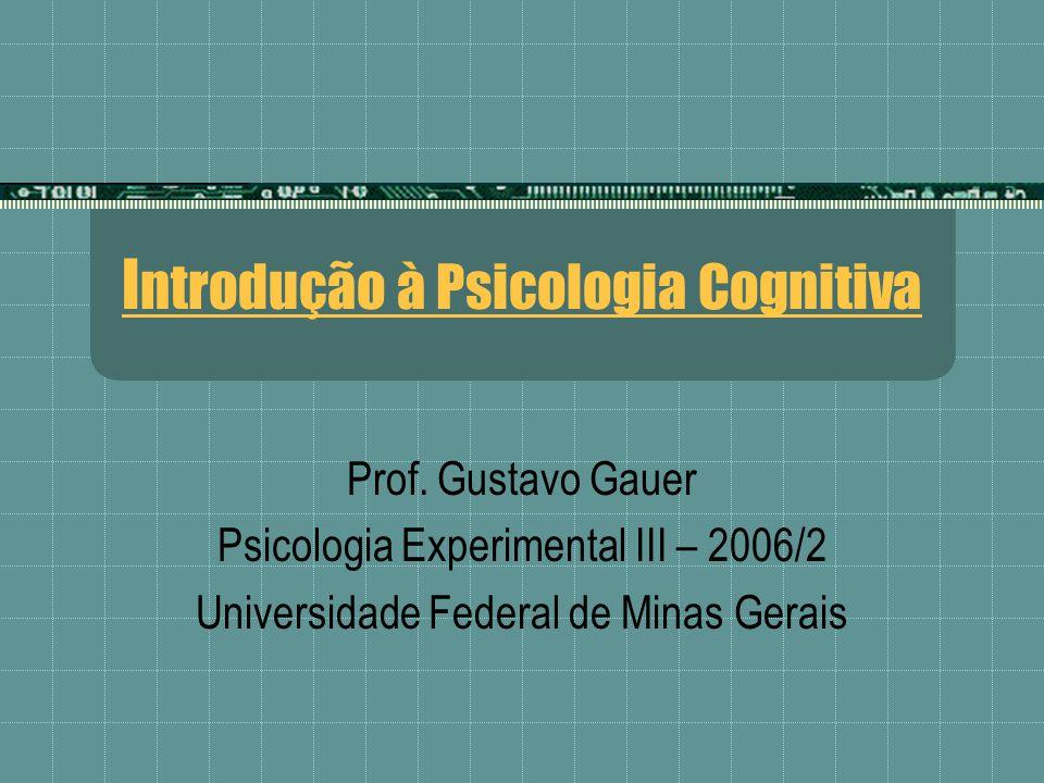 I ntrodução à Psicologia Cognitiva Prof. Gustavo Gauer Psicologia Experimental III – 2006/2 Universidade Federal de Minas Gerais