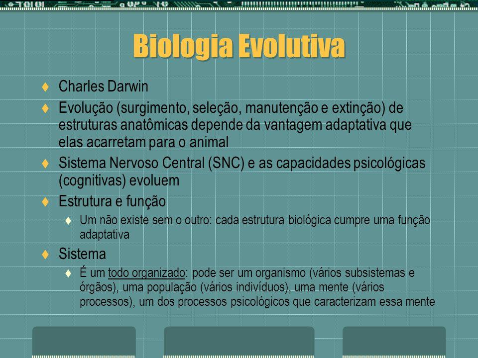 Biologia Evolutiva Charles Darwin Evolução (surgimento, seleção, manutenção e extinção) de estruturas anatômicas depende da vantagem adaptativa que elas acarretam para o animal Sistema Nervoso Central (SNC) e as capacidades psicológicas (cognitivas) evoluem Estrutura e função Um não existe sem o outro: cada estrutura biológica cumpre uma função adaptativa Sistema É um todo organizado: pode ser um organismo (vários subsistemas e órgãos), uma população (vários indivíduos), uma mente (vários processos), um dos processos psicológicos que caracterizam essa mente