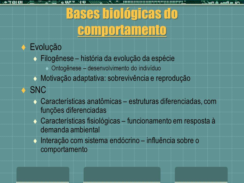 Bases biológicas do comportamento Evolução Filogênese – história da evolução da espécie Ontogênese – desenvolvimento do indivíduo Motivação adaptativa