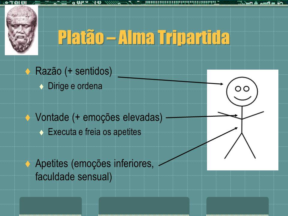 Platão – Alma Tripartida Razão (+ sentidos) Dirige e ordena Vontade (+ emoções elevadas) Executa e freia os apetites Apetites (emoções inferiores, fac