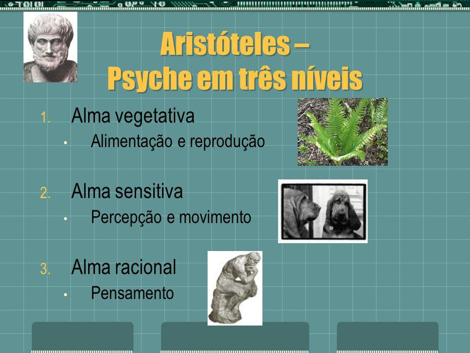 Aristóteles – Psyche em três níveis 1. Alma vegetativa Alimentação e reprodução 2. Alma sensitiva Percepção e movimento 3. Alma racional Pensamento