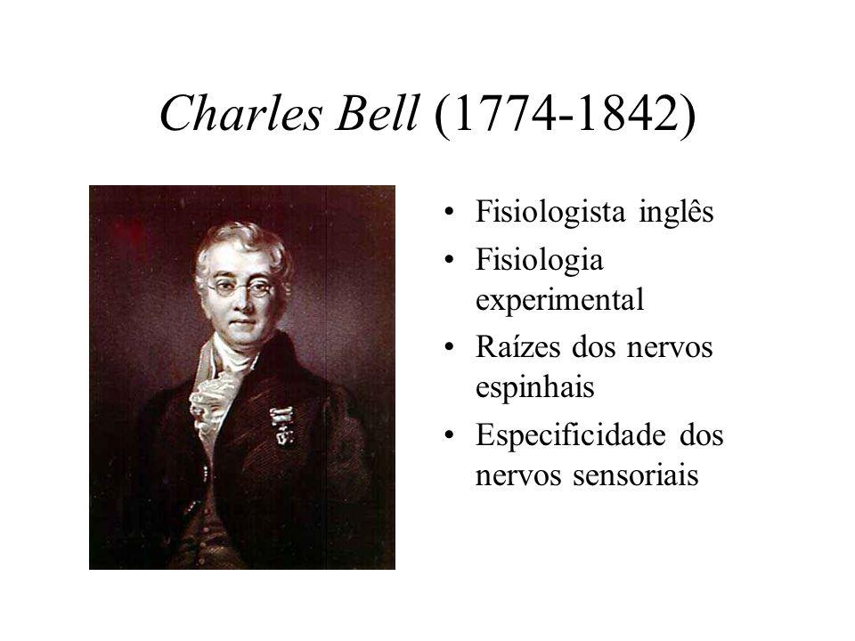Charles Bell (1774-1842) Fisiologista inglês Fisiologia experimental Raízes dos nervos espinhais Especificidade dos nervos sensoriais
