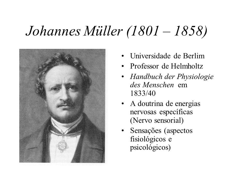 Johannes Müller (1801 – 1858) Universidade de Berlim Professor de Helmholtz Handbuch der Physiologie des Menschen em 1833/40 A doutrina de energias nervosas específicas (Nervo sensorial) Sensações (aspectos fisiológicos e psicológicos)