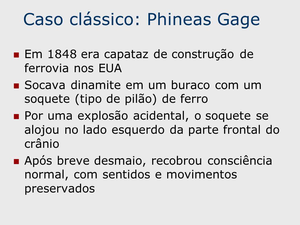 Caso clássico: Phineas Gage Em 1848 era capataz de construção de ferrovia nos EUA Socava dinamite em um buraco com um soquete (tipo de pilão) de ferro Por uma explosão acidental, o soquete se alojou no lado esquerdo da parte frontal do crânio Após breve desmaio, recobrou consciência normal, com sentidos e movimentos preservados