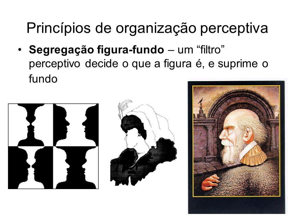 Princípios de organização perceptiva Segregação figura-fundo – um filtro perceptivo decide o que a figura é, e suprime o fundo