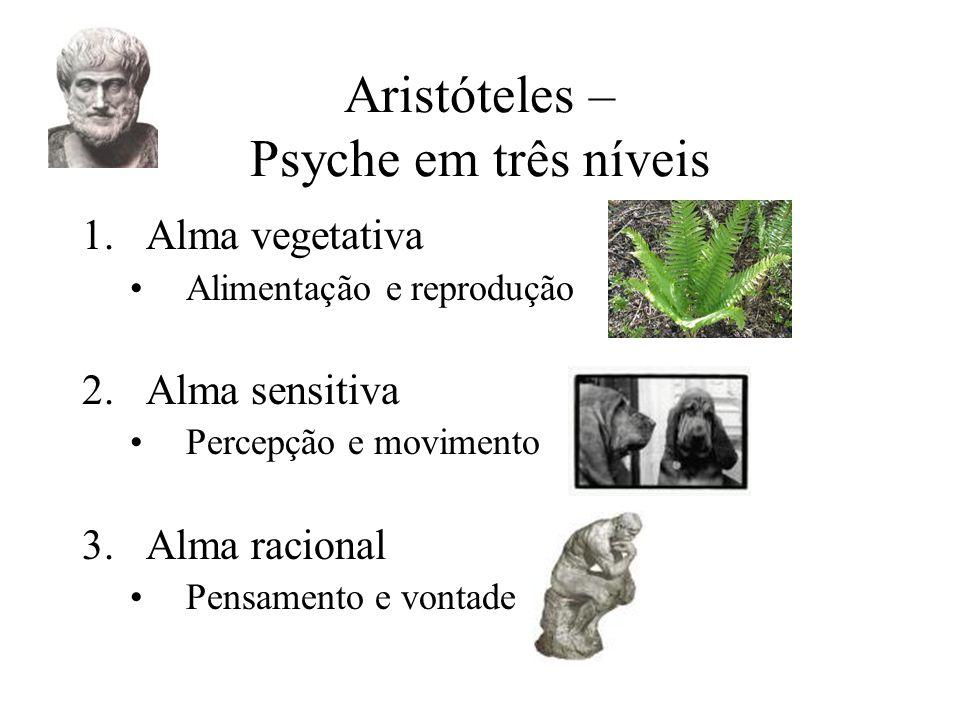 Aristóteles – Psyche em três níveis 1.Alma vegetativa Alimentação e reprodução 2.Alma sensitiva Percepção e movimento 3.Alma racional Pensamento e vontade
