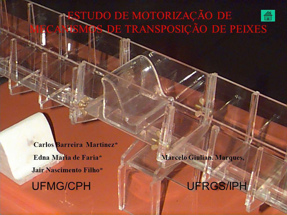 ESTUDO DE CASO DE MOTORIZAÇÃO DE UM MTP´s.
