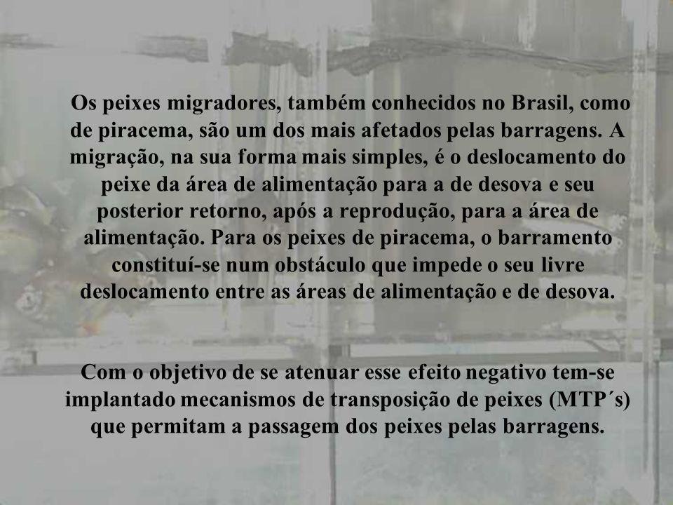 CONSIDERAÇÕES-FINAIS A implantação de mecanismos de transposição de peixes tem esbarrado em uma resistência do meio técnico baseada na afirmação que estes irão reduzir as taxa interna de retorno dos empreendimentos.