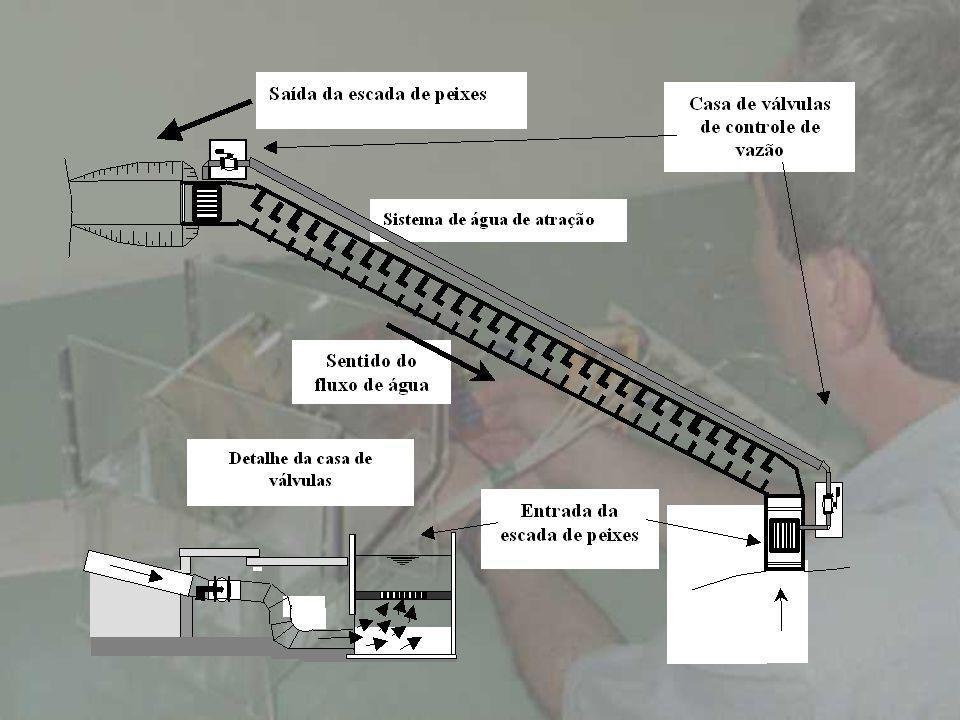 PRINCÍPIOS DE UMA ESCADA DE PEIXES As principais partes que compõem as escadas são: entrada, centro e saída.