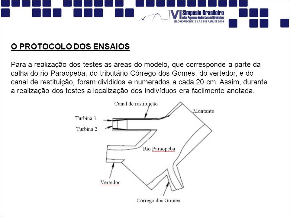 O PROTOCOLO DOS ENSAIOS Para a realização dos testes as áreas do modelo, que corresponde a parte da calha do rio Paraopeba, do tributário Córrego dos