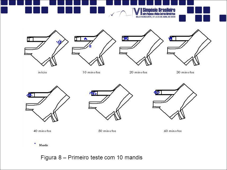 Figura 8 – Primeiro teste com 10 mandis
