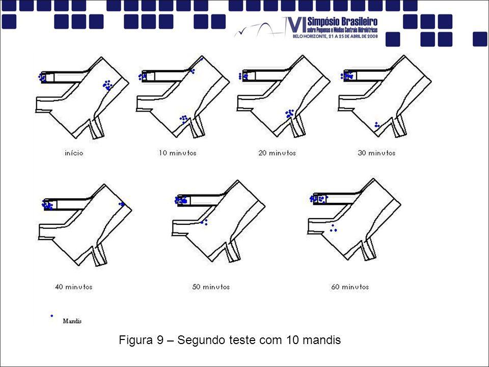 Figura 9 – Segundo teste com 10 mandis