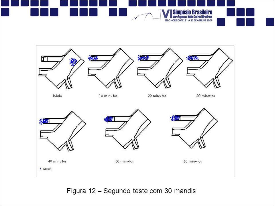 Figura 12 – Segundo teste com 30 mandis