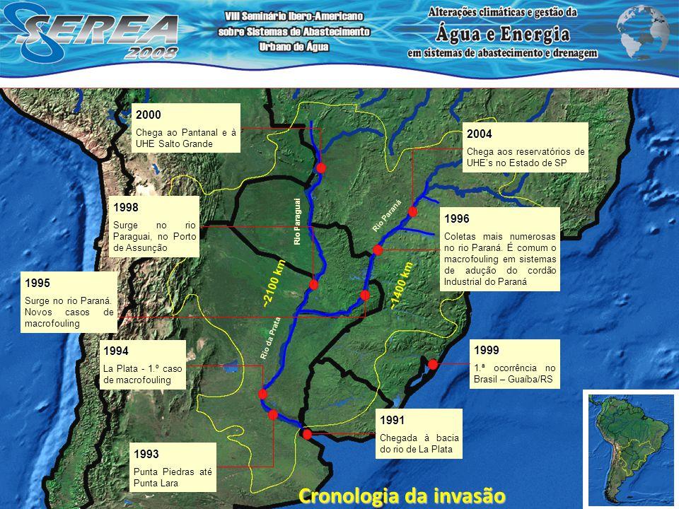 1991 Chegada à bacia do rio de La Plata 1993 Punta Piedras até Punta Lara 1994 La Plata - 1.º caso de macrofouling 1999 1.ª ocorrência no Brasil – Gua