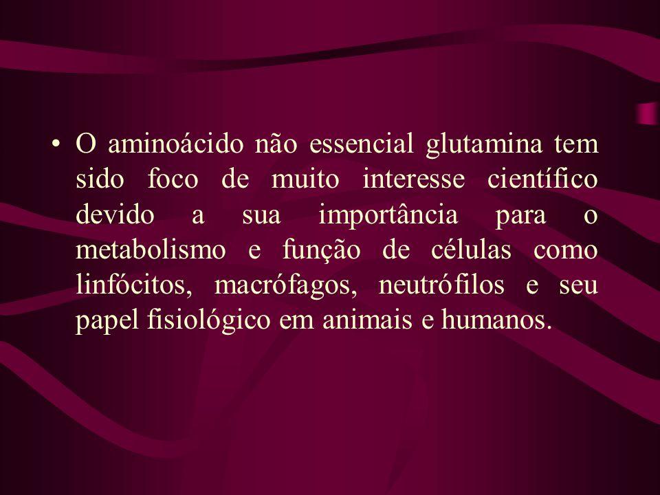 O aminoácido não essencial glutamina tem sido foco de muito interesse científico devido a sua importância para o metabolismo e função de células como linfócitos, macrófagos, neutrófilos e seu papel fisiológico em animais e humanos.