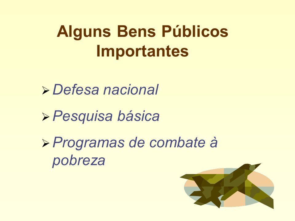 Alguns Bens Públicos Importantes Defesa nacional Pesquisa básica Programas de combate à pobreza