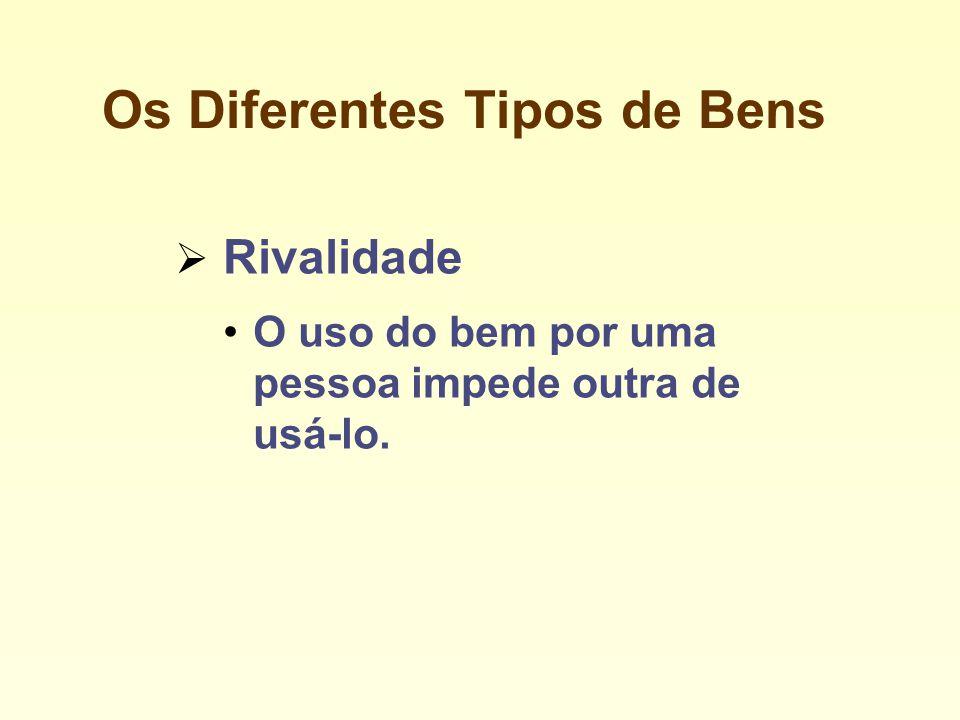 Os Diferentes Tipos de Bens Rivalidade O uso do bem por uma pessoa impede outra de usá-lo.