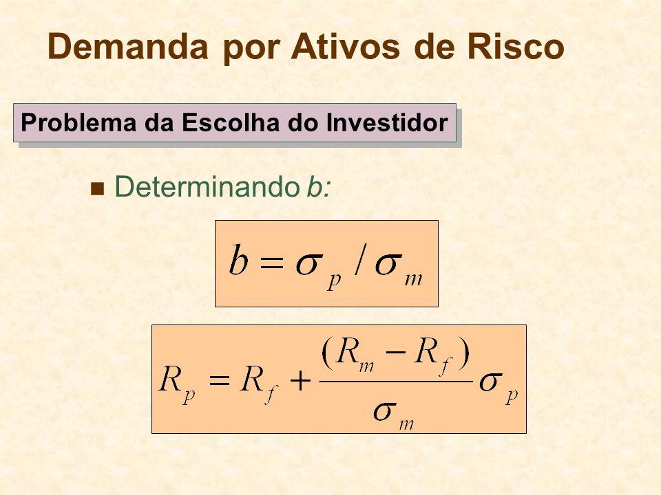 Demanda por Ativos de Risco Determinando b: Problema da Escolha do Investidor