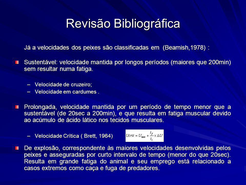 Revisão Bibliográfica Já a velocidades dos peixes são classificadas em (Beamish,1978) : Sustentável: velocidade mantida por longos períodos (maiores q