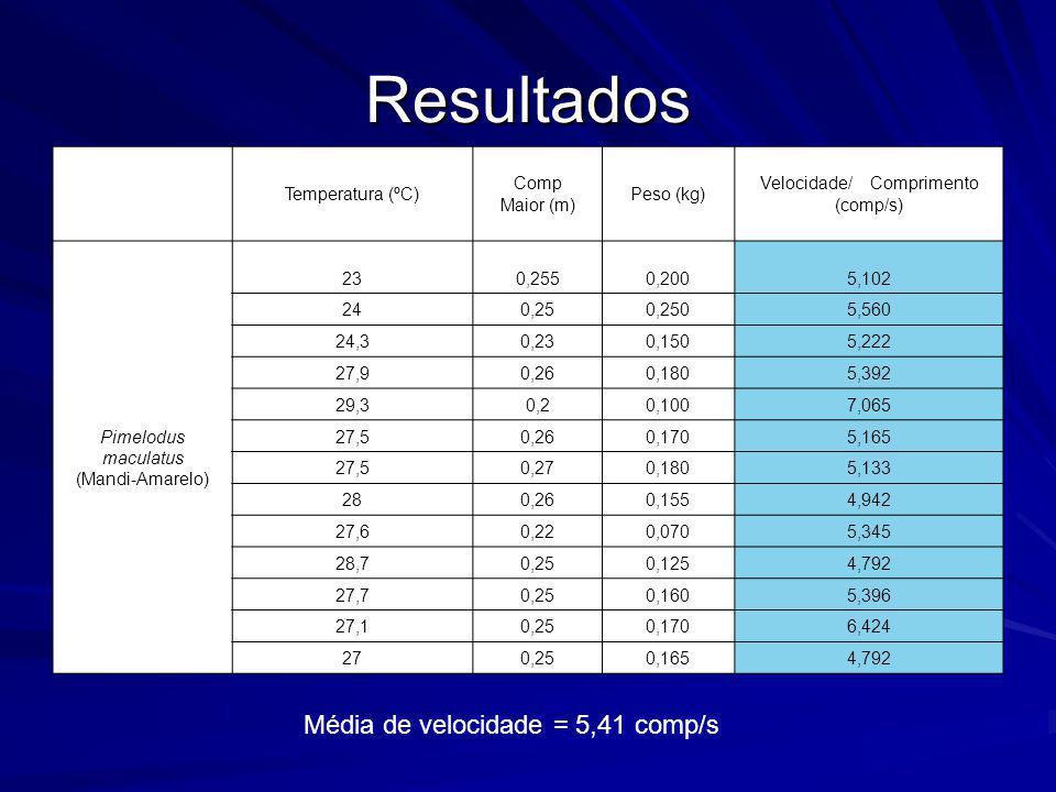 Resultados Temperatura (ºC) Comp Maior (m) Peso (kg) Velocidade/ Comprimento (comp/s) Pimelodus maculatus (Mandi-Amarelo) 230,2550,2005,102 240,250,25