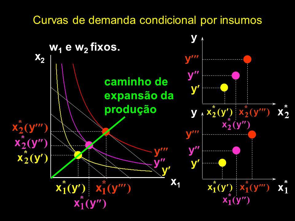 w 1 e w 2 fixos. Curvas de demanda condicional por insumos caminho de expansão da produção