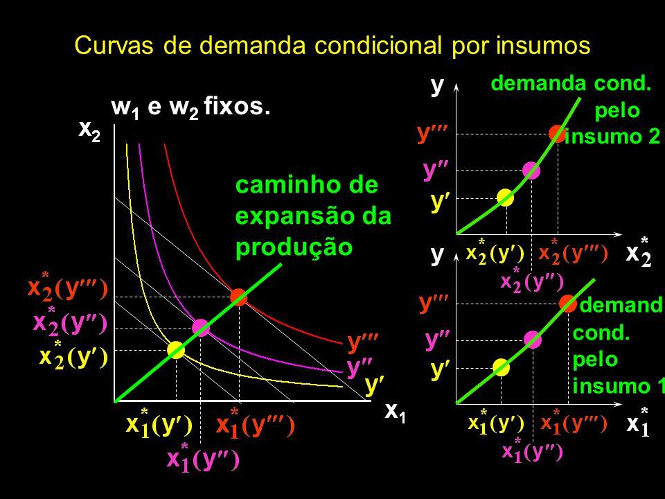 w 1 e w 2 fixos. Curvas de demanda condicional por insumos caminho de expansão da produção demanda cond. pelo insumo 2 demand cond. pelo insumo 1
