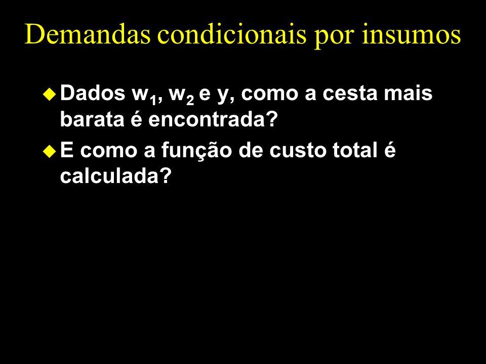 Demandas condicionais por insumos u Dados w 1, w 2 e y, como a cesta mais barata é encontrada? u E como a função de custo total é calculada?