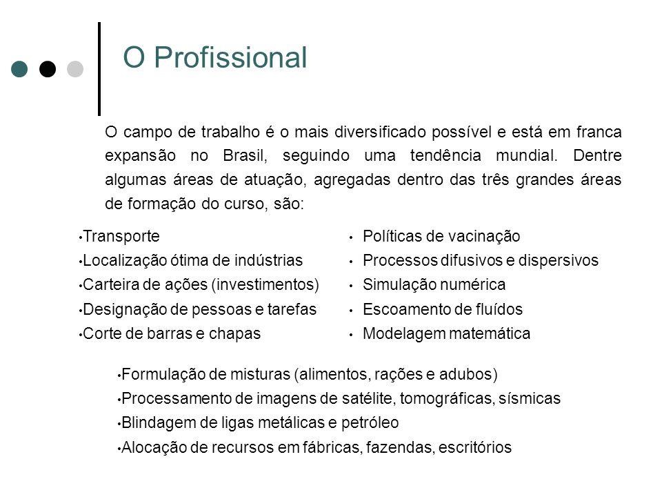 O Profissional O campo de trabalho é o mais diversificado possível e está em franca expansão no Brasil, seguindo uma tendência mundial. Dentre algumas