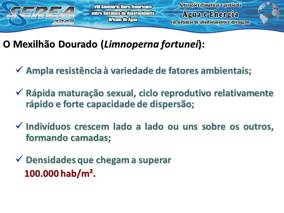 Avaliação da influência no sistema de adução de turbo-bombas Estudo de caso 10 x 0,0012 x altitude local (m);