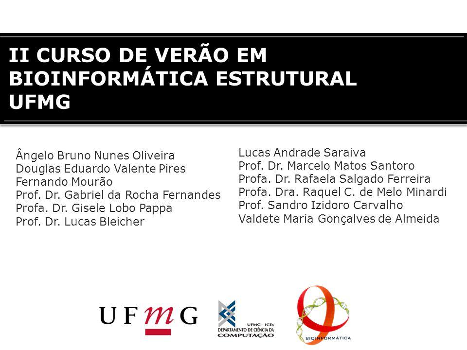 II CURSO DE VERÃO EM BIOINFORMÁTICA ESTRUTURAL UFMG Ângelo Bruno Nunes Oliveira Douglas Eduardo Valente Pires Fernando Mourão Prof. Dr. Gabriel da Roc