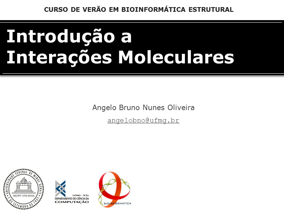 CURSO DE VERÃO EM BIOINFORMÁTICA ESTRUTURAL Angelo Bruno Nunes Oliveira angelobno@ufmg.br Introdução a Interações Moleculares