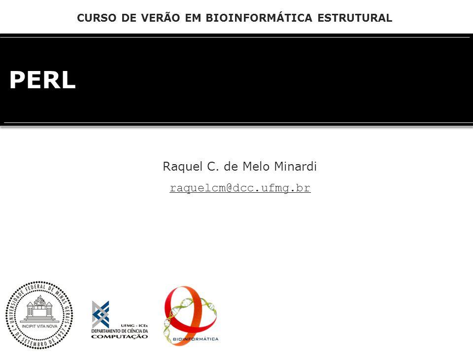 PERL Raquel C. de Melo Minardi raquelcm@dcc.ufmg.br CURSO DE VERÃO EM BIOINFORMÁTICA ESTRUTURAL