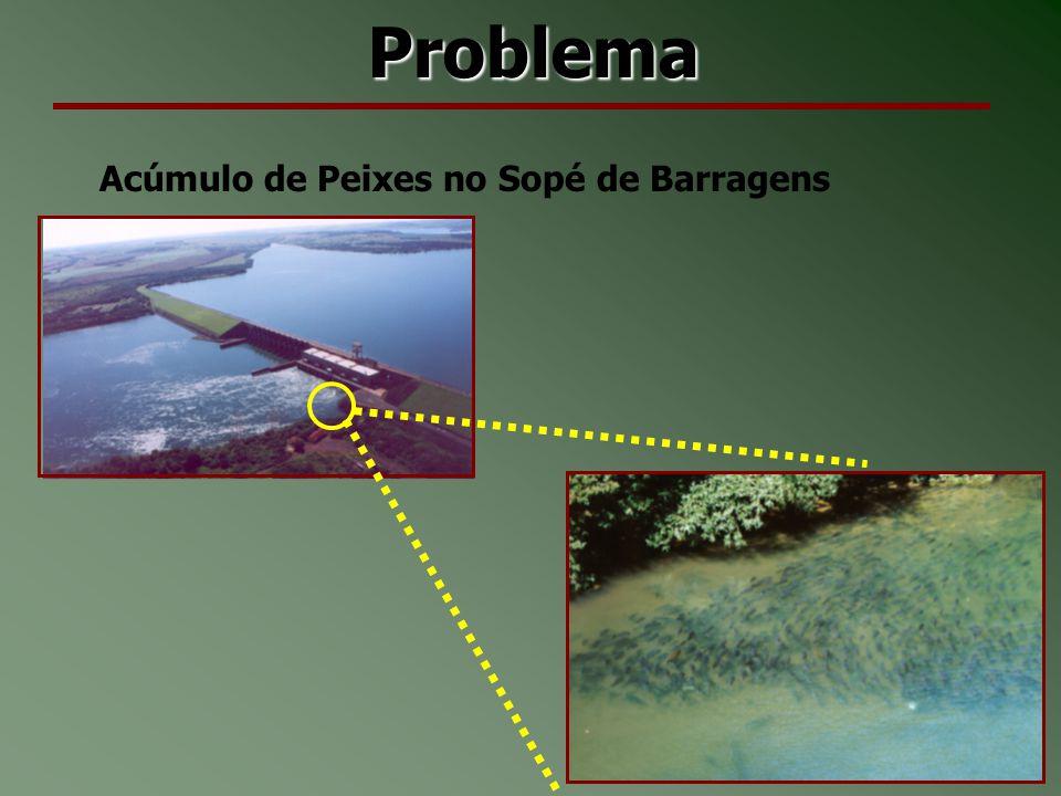 Problema Acúmulo de Peixes no Sopé de Barragens