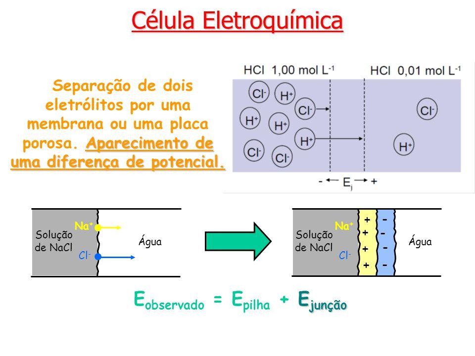 E observado = E pilha + E EE Ejunção Solução de NaCl Na + Cl - Água Solução de NaCl Na + Cl - Água + + + + - - - - Aparecimento de uma diferença de potencial.