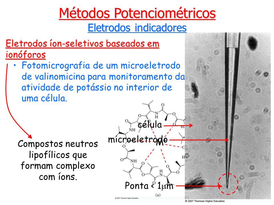 Eletrodos íon-seletivos baseados em ionóforos Fotomicrografia de um microeletrodo de valinomicina para monitoramento da atividade de potássio no interior de uma célula.