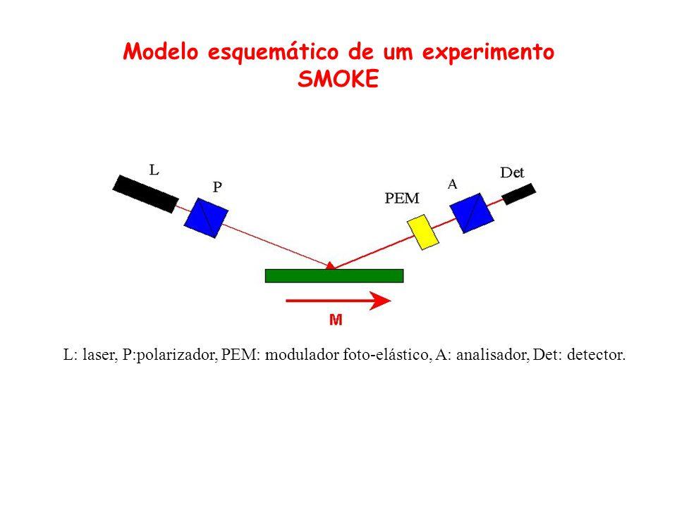 Depois da reflexão pela superfície magnetizada a amplitude da componente principal será reduzida pelo coeficiente isotrópico de reflexão de Fresnel.