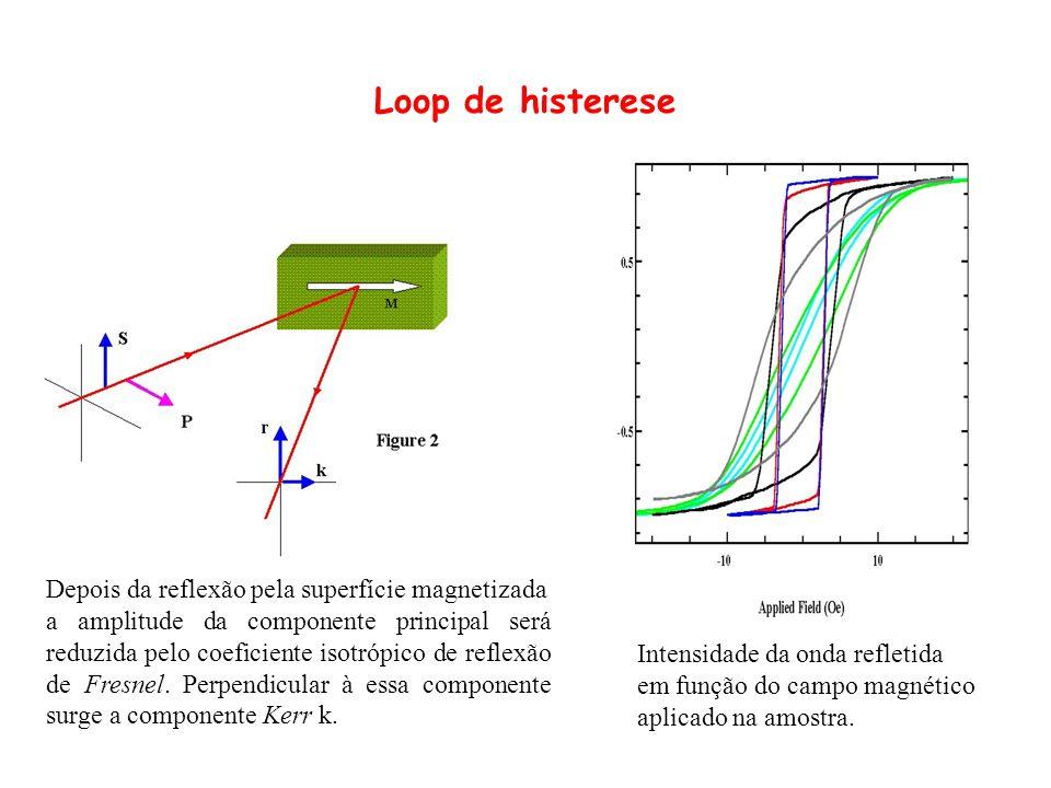 Depois da reflexão pela superfície magnetizada a amplitude da componente principal será reduzida pelo coeficiente isotrópico de reflexão de Fresnel. P