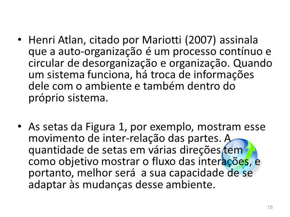 Henri Atlan, citado por Mariotti (2007) assinala que a auto-organização é um processo contínuo e circular de desorganização e organização.