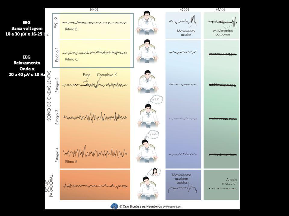 EEG Baixa voltagem 10 a 30 µV e 16-25 Hz EEGRelaxamento Onda α 20 a 40 µV e 10 Hz